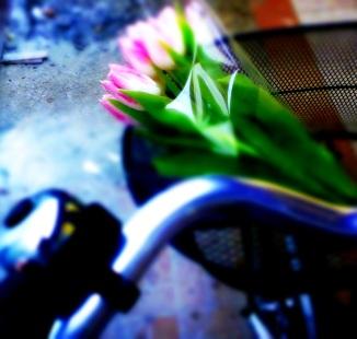 My new bike :)